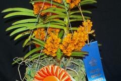 Ascocenda miniatum By Patrece Remmel